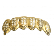 Gold Iced Out Bottom Grill